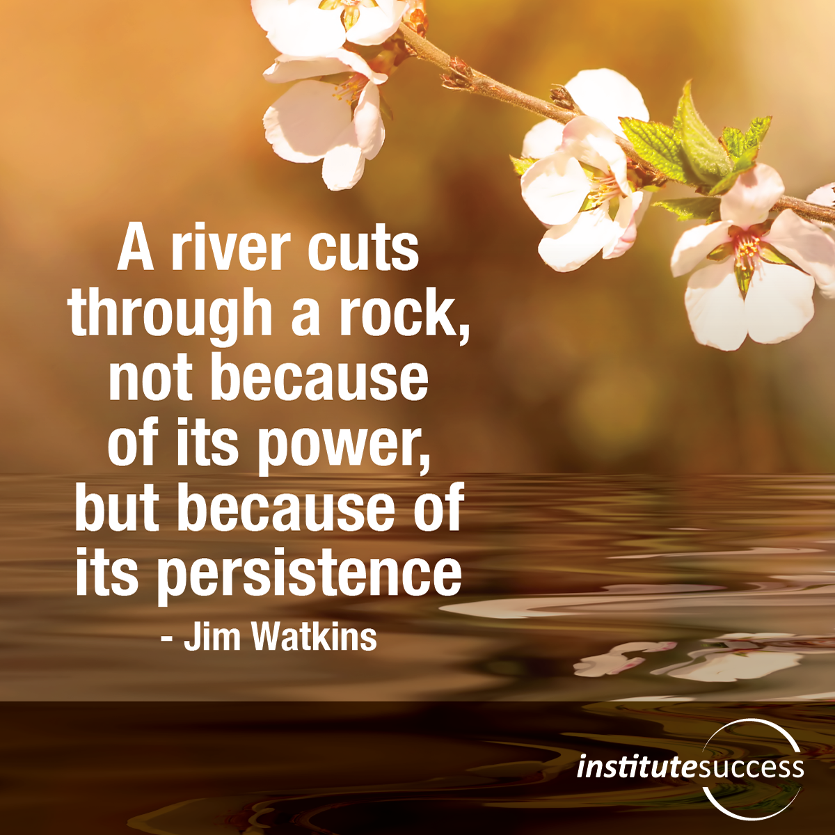 Persistence Motivational Quotes: A River Cuts Through A Rock, Not Because Of Its Power, But