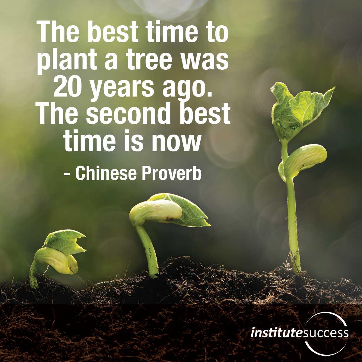 The best time to plant a tree was 20 years ago.  The second best time is now – Chinese Proverb