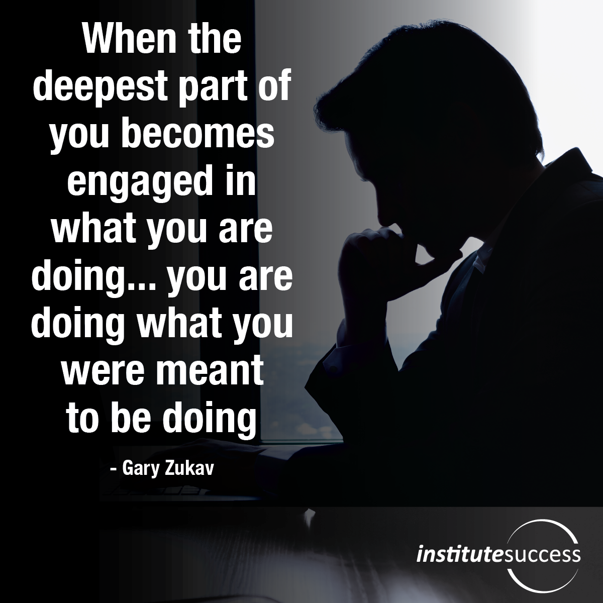 When the deepest part of you becomes engaged in what you are doing… you are doing what you were meant to be doing – Gary Zukav