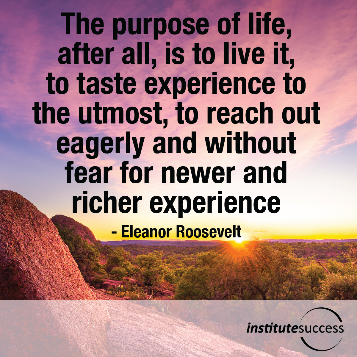 The purpose of life, after all, is to live it, to taste experience to the utmost, to reach out eagerly and without fear for newer and richer experience – Eleanor Roosevelt