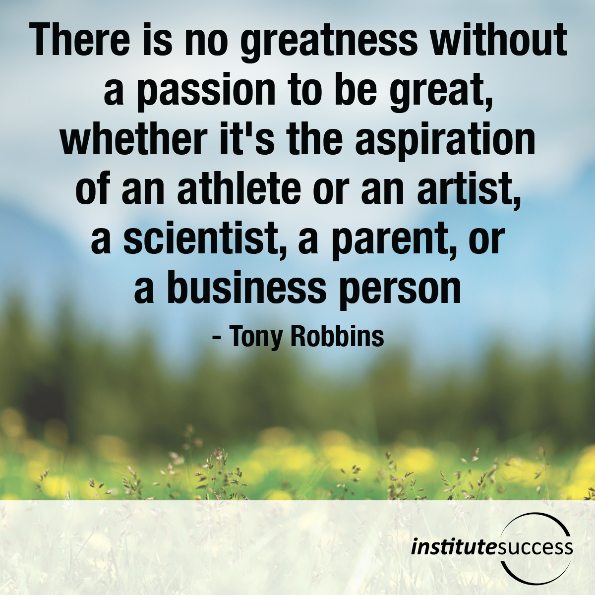 There is no greatness without a passion to be great, whether it's the aspiration of an athlete or an artist, a scientist, a parent, or a businessperson – Tony Robbins