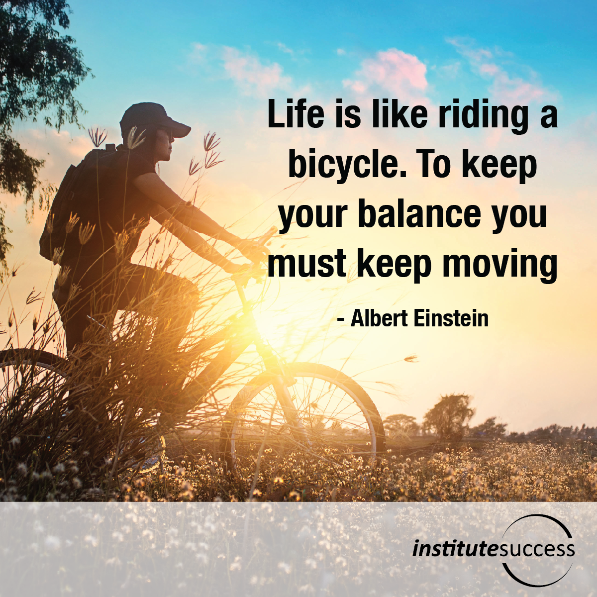Life is like riding a bicycle. To keep your balance you must keep moving – Albert Einstein
