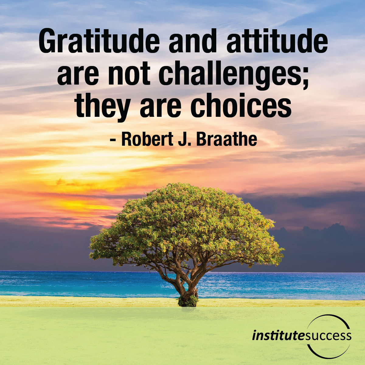 Gratitude and attitude are not challenges; they are choices – Robert J. Braathe